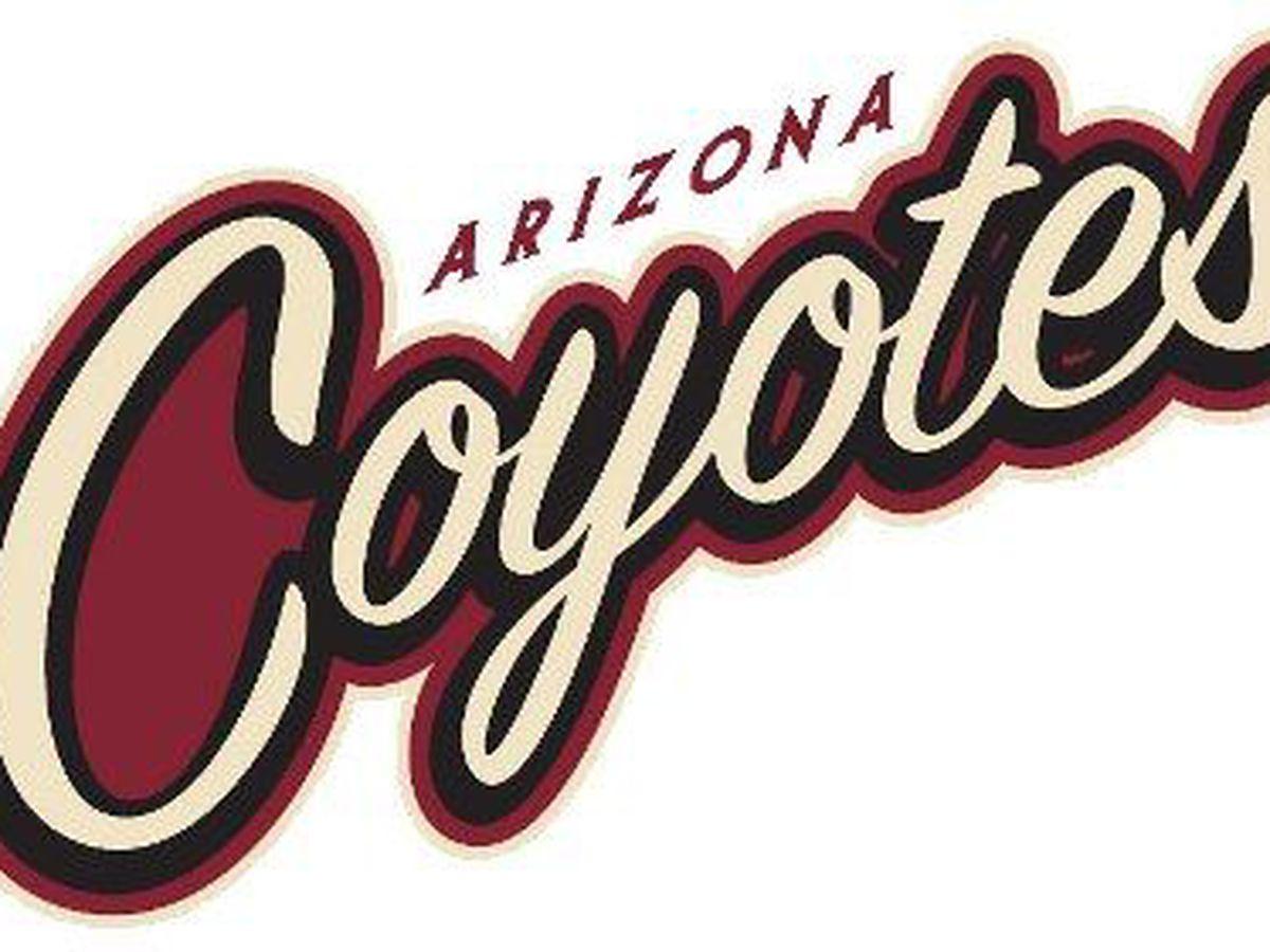Tucson Roadrunners head coach Jay Varady to join Arizona Coyotes staff