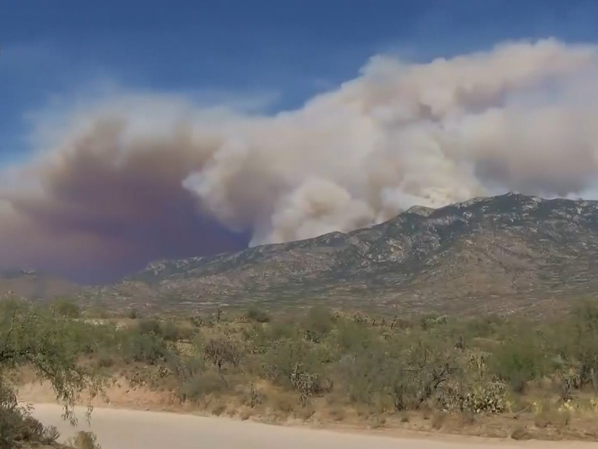 Arizona wildfire officials say another year of 'large fires' possible