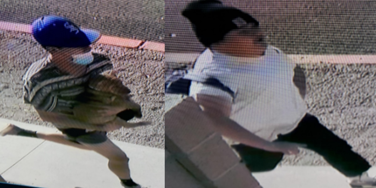 Tucson police looking for suspects connected to stolen puppy