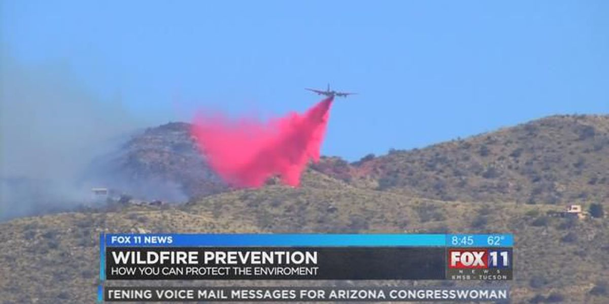 WILDFIRE PREVENTION: Enjoy the outdoors while protecting the environment