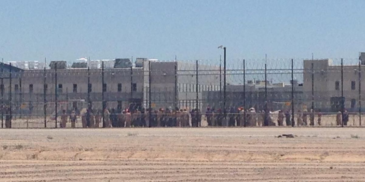 200 Eloy immigrant detainees go on hunger strike