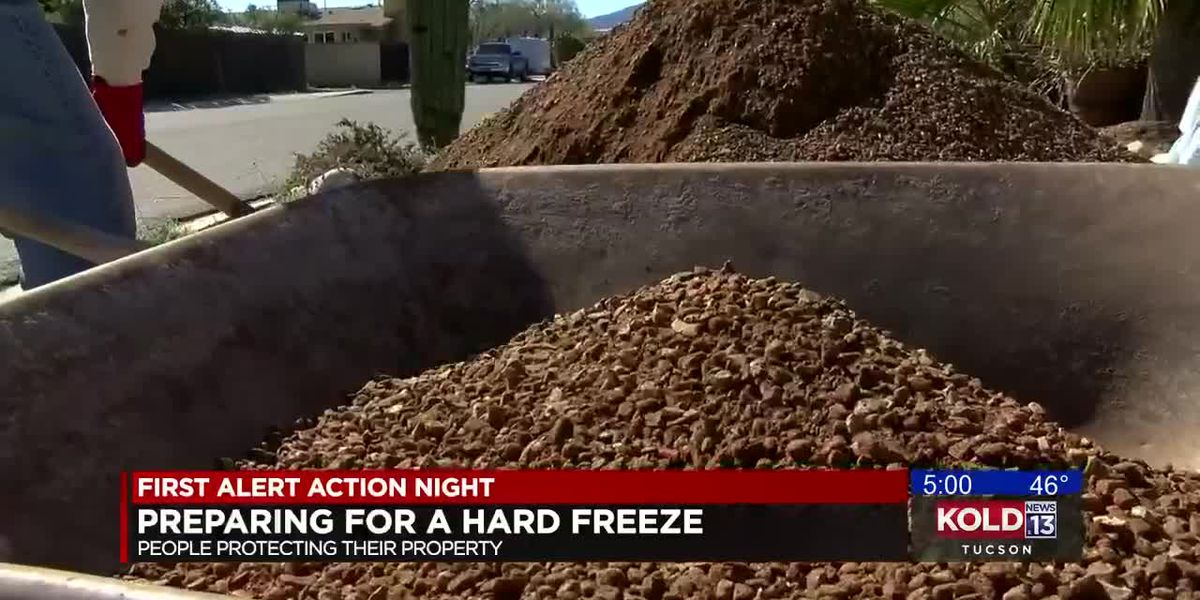 Homeowners prepare for hard freeze