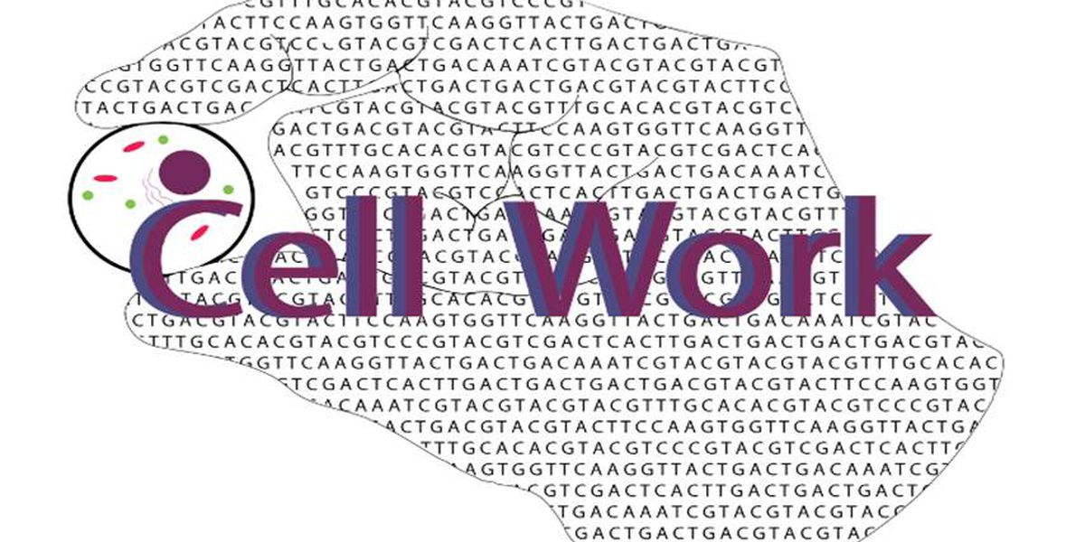 Startup company Cell Work joins the University of Arizona Center for Innovation