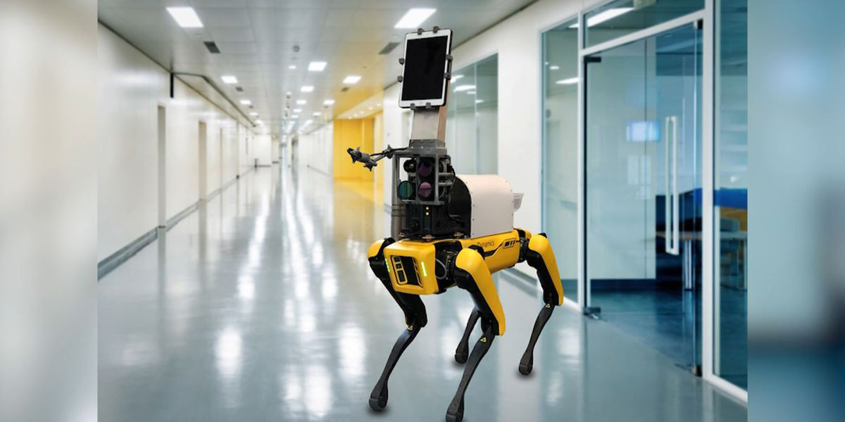 Dog-like robot could remotely measure vital signs of COVID-19 patients