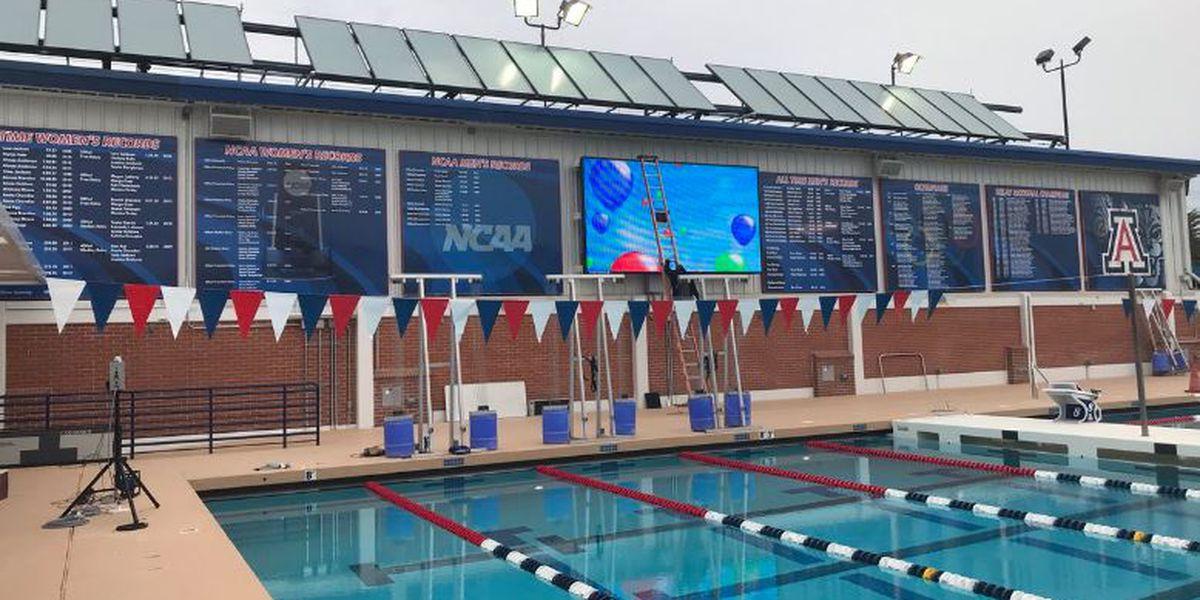 NCAA places UA swim program on probation until 2021