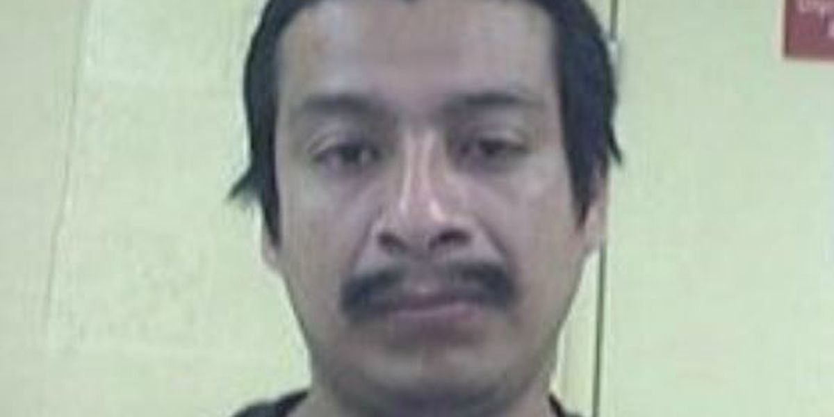 Border Patrol Agents arrest convicted felon