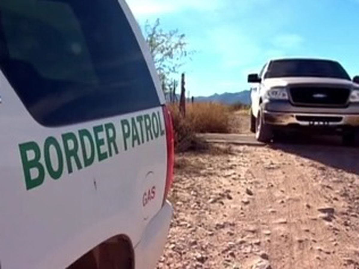 Border Patrol agent assaulted by migrant